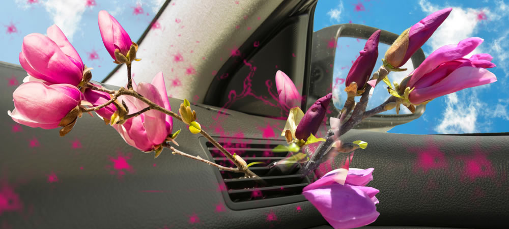 DIY Car Hacks: Cut costs by making your own homemade car air freshener